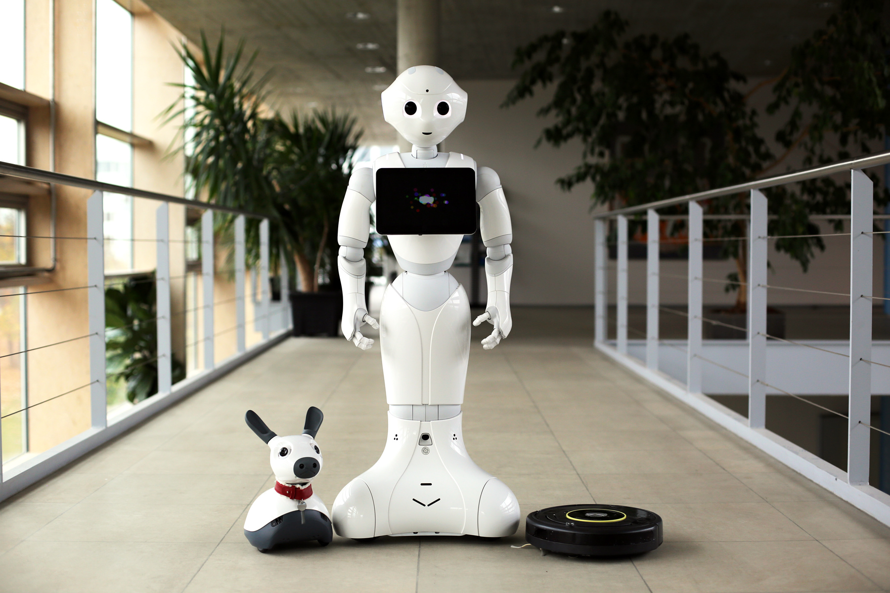 NIKA: Der sympathische Kompagnon-Roboter © Fraunhofer IAO